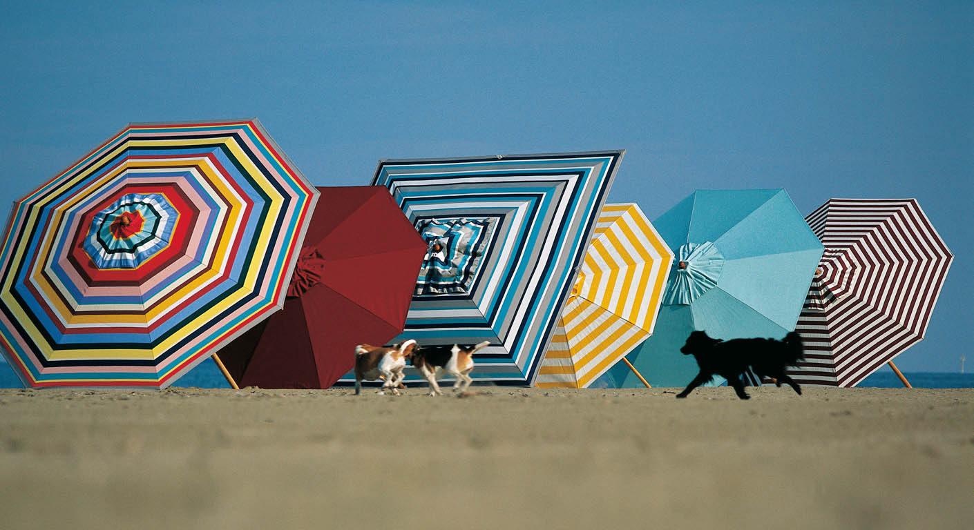 Sonnenschirme von Weishäupl bunt am Strand